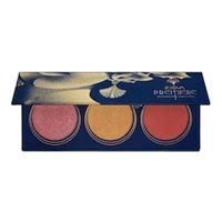 ZOEVA premiere blush palette - palette di blush