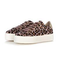 STOKTON scarpe donna sneakers cavallino leopardo rosa STOKTON