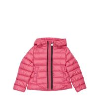 MONCLER piumino glycine in nylon