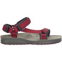 Lizard sandali super hike rosso